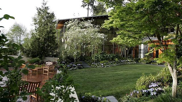 Las casas rodeadas de mucha naturaleza son ideales para construir un pequeño lugar de descanso arriba de un árbol.