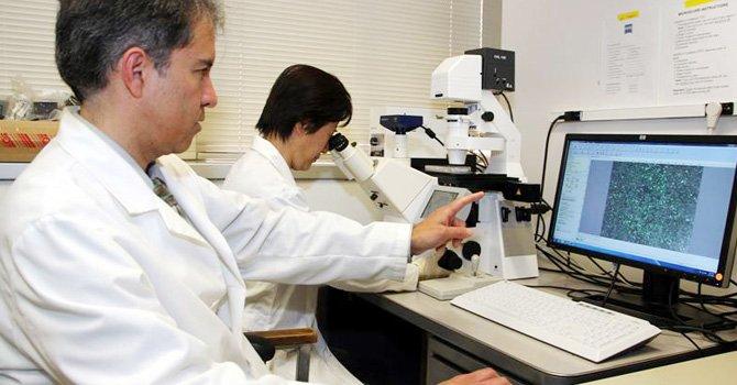 Buscan convencer sobre necesidad de seguro salud asequible para indocumentado