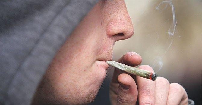 Estudio muestra impacto socioeconómico de consumo prolongado de marihuana