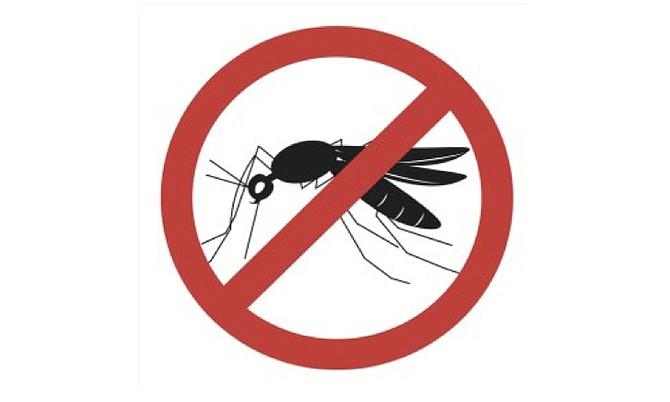 Miami libre del virus Zika
