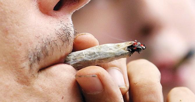 fumar x clasificado lechón