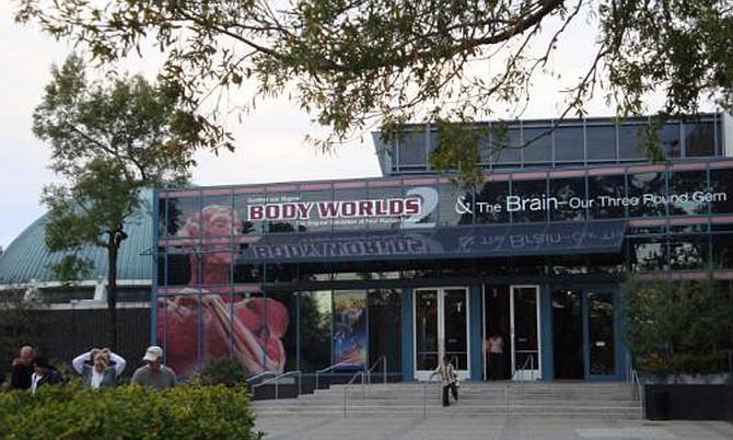 Bodyworlds provee a visitantes el acceso más cercano a las funciones internas del cuerpo humano fuera de un laboratorio u otro ambiente médico