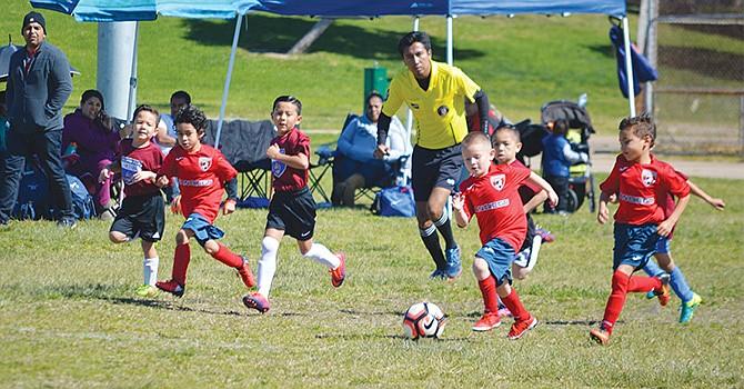 ¡Guerreros del Soccer! niños de apenas 6 años dieron grandiosos partidos de fútbol en la Copa Presidentes