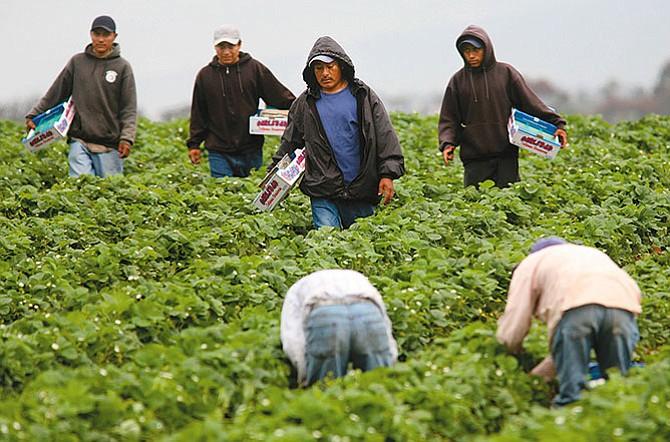 Vetar o expulsar inmigrantes acabaría con el país para el 2035