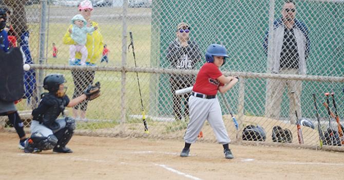 Pasión por el béisbol