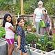 Niños y maestros de Chula Vista Hills Elementary School han cuidado con gran dedicación su Jardín Escolar Comunitario. Foto-Cortesía.(CVESD).