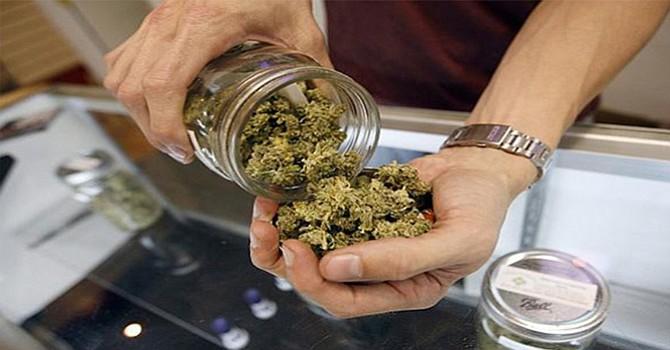 Elimina Fiscal Federal Memorando de Obama que daba  autonomía a los estados en tema de venta  de marihuana
