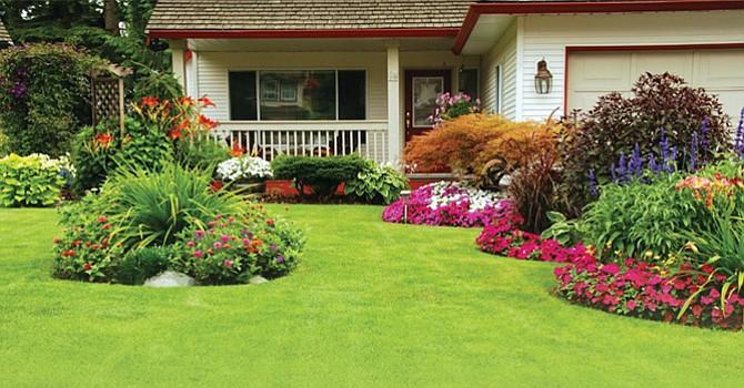 ¿Cómo cuidar tu jardín? Los días soleados y primaverales,  la mejor oportunidad para hacerlo