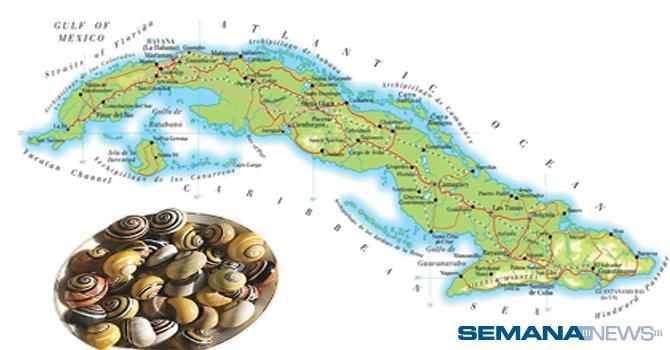 Baracoa: esencia de Cuba