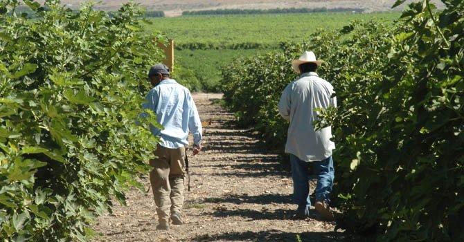 Los inmigrantes mexicanos son los peor pagados