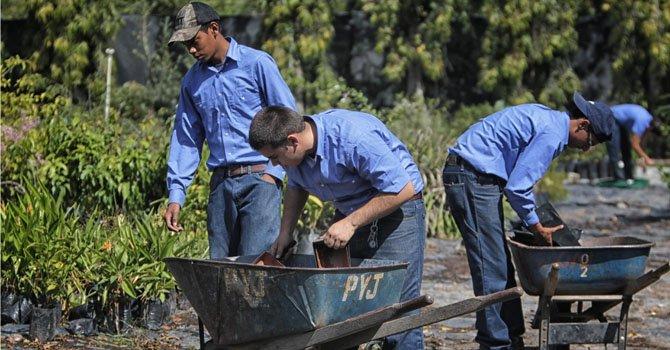 Honduras: impulsan la agricultura entre los jóvenes