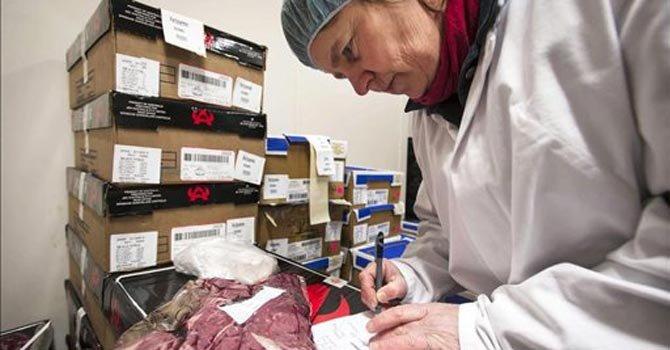 Polémica por lasaña con carne de caballo en Europa