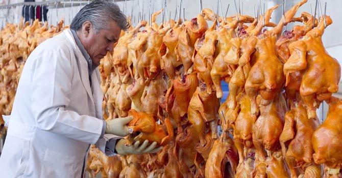 El director del Rastro de Aves de la ciudad mexicana de León, Óscar Ramos Rodríguez, examina algunas aves sacrificadas, el lunes 18.
