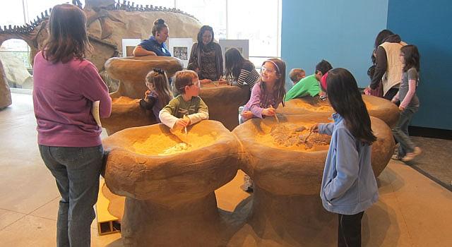 Niños excavan en la búsqueda de huesos de dinosaurios en la exposición sobre estos reptiles fósiles en el Maryland Science Center de Baltimore, MD.