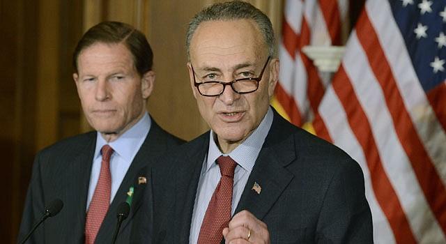 El senador demócrata por Nueva York, Charles Schumer (d), presentó el proyecto a las 2 am del miércoles 17 de abril, lo auspician sus siete compañeros.