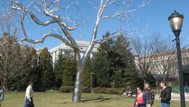 Un jardín lleno de esculturas en DC