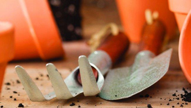 Herramientas ergonómicas para la jardinería