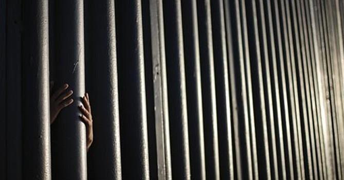 Grupos ecologistas apelan decisión de construcción del muro fronterizo en Sur de California