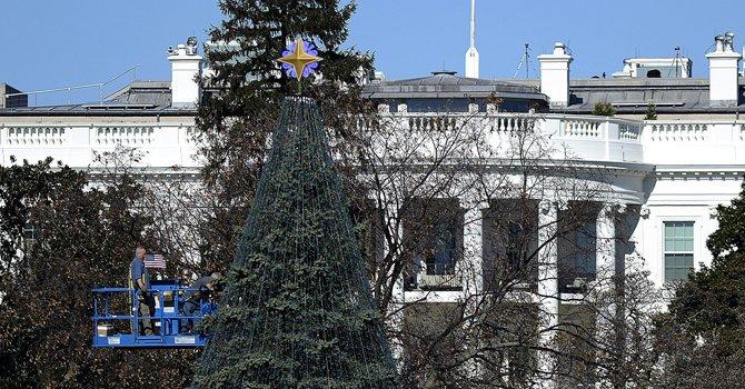 Alistan Árbol Nacional de Navidad en DC