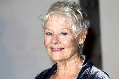 """Judi Dench, nominada como Mejor Actriz por """"Philomena""""."""