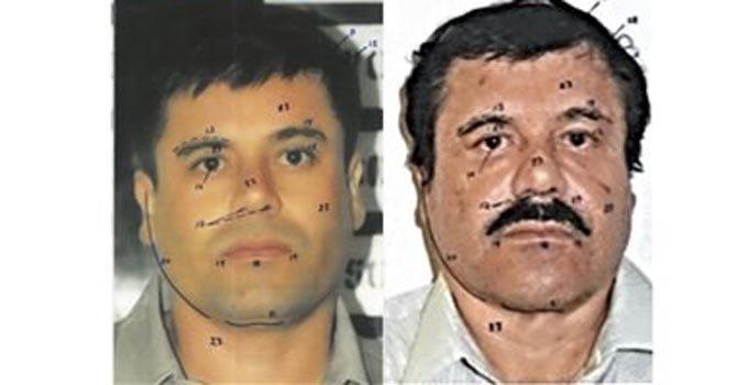 Chapo  de niño maltratado a jefe narco  f59b4930d60