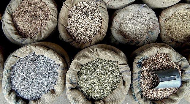 Las leguminosas forman parte de la dieta diaria hispana.