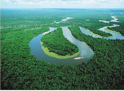 El Amazonas: un pulmón en problemas