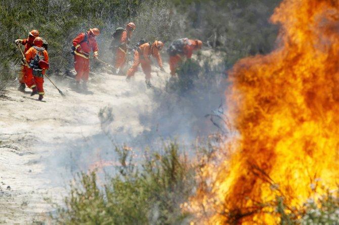 Incendios como los ocurridos en varias ciudades del Condado de San Diego suelen dejar secuelas sicológicas en los niños, por lo que requieren orientación especial para enfrentarlos.