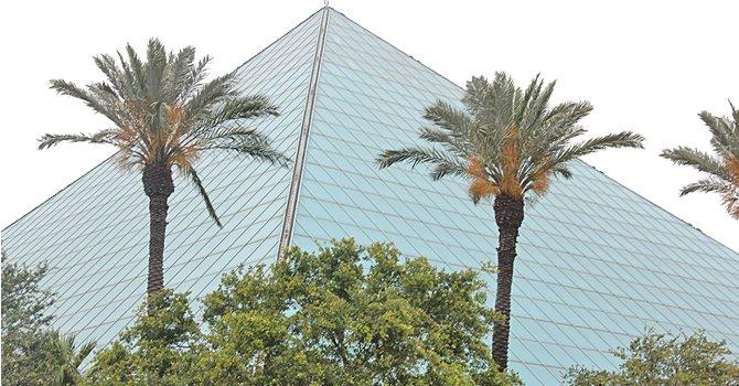 Hoteles para todos los bolsillos y presupuestos ofrecen sus servicios. Uno de los más populares es el Moody Gardens, que cuenta con amplio jardín botánico popularmente conocido por sus pirámides con plantas, árboles y jardines naturales además del inmenso acuario.