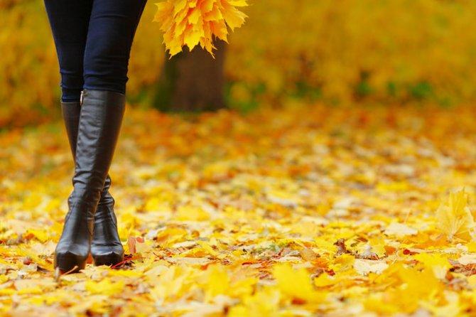 Los zapatos que vienen: tendencias otoño 2014