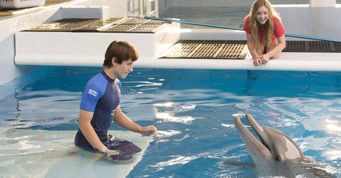 Dolphin Tale 2 estrena a nivel nacional el 12 de septiembre; regresa el delfín Winter y los mismos personajes de la primera propuesta.  Fotos: Cortesía.