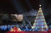 El árbol de Navidad enfrente de la Casa Blanca en Washington, DC, Estados Unidos.