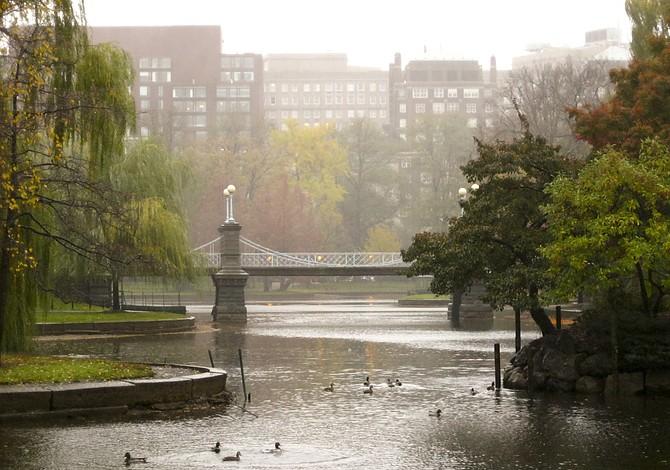 BOSTON: Esta Navidad se celebrará con lluvia y no con nieve