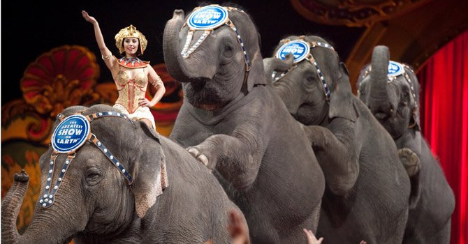 Ringling Brothers no tendrán elefantes en sus shows