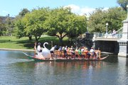 Swan Boats en el Boston Public Garden