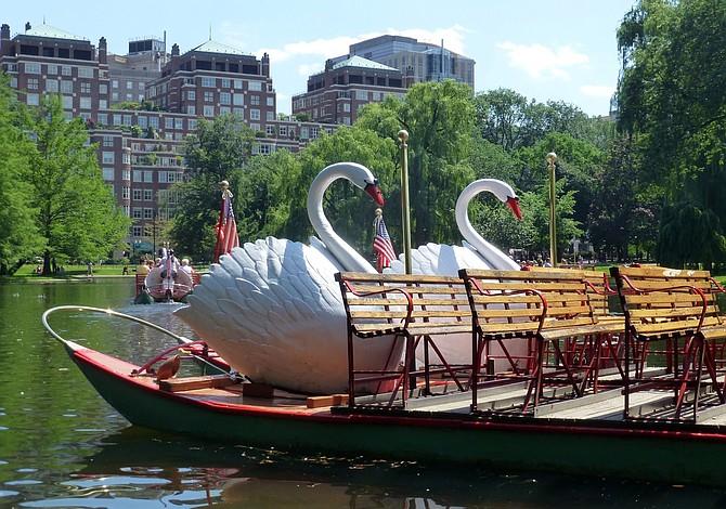 Pronto regresan los Swan Boats al Public Garden
