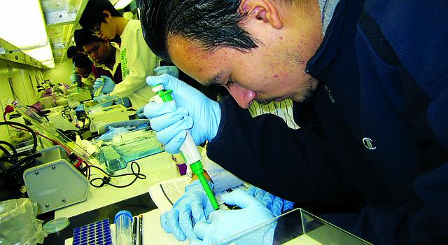 CIENCIA. En el MDBio Lab, un estudiante de Gaithersburg H.S. identifica muestras de ADN de diversas especies de tiburón, el pasado mes de febrero.