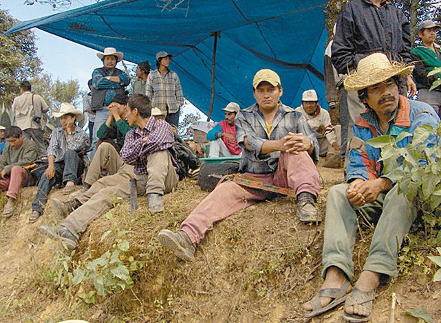 Afectó TLCAN poder de compra de 3.5 millones de campesinos: MST