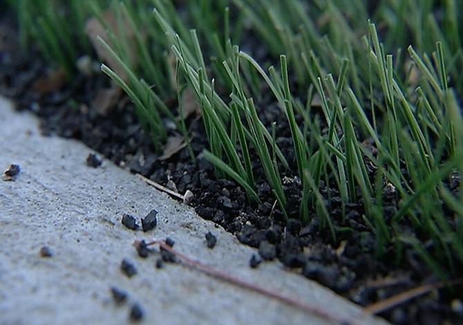 ¿Césped Tóxico?  Crece un movimiento en contra de la grama sintética