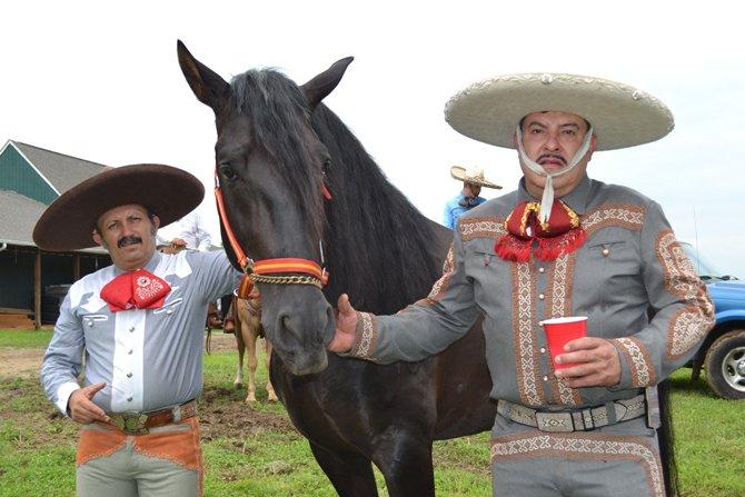 Un caballo de pura raza española, la nueva adquisición de Isaac Castro.