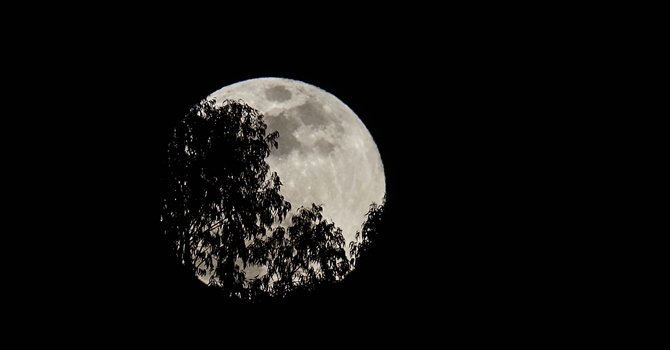 Los chinos celebran el Festival de Medio Otoño con mirada en la Luna