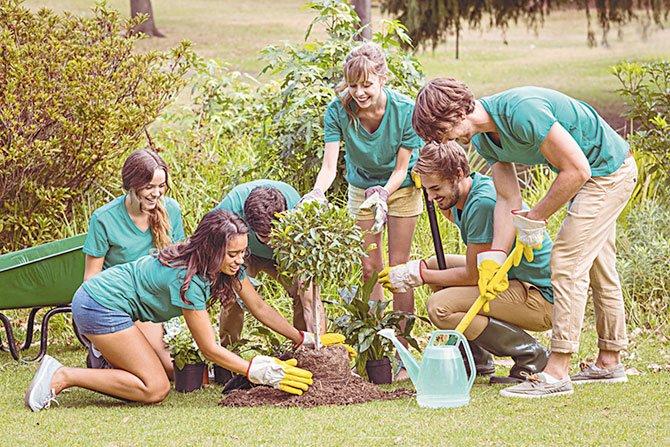 Buscan voluntarios