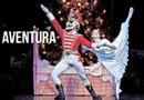 Más de un millón de personas han visto The Nutcracker desde que se estrenó por primera vez con su nueva producción hace 29 años. Anteriormente había estrenado en 1972 en otro escenario, lo que marca en total 43 años de presentaciones. Foto Amita Sarkar/Houston Ballet