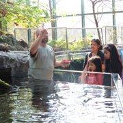 Un trabajador del museo explica a visitantes el proceso para alimentar los peces.