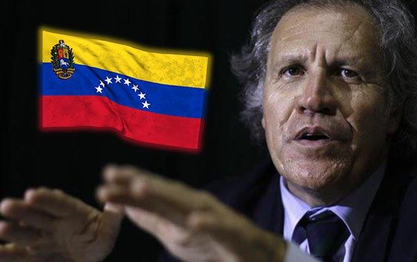 "Almagro prevé ""futuro de paz"" en Venezuela tras triunfo opositor en comicios"