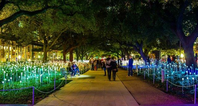 El artista inglés Bruce Munro inundó con su creatividad el espacio más verde del centro de la ciudad. Cuando llega el anochecer, 4,550 luces y esferas de vidrio esmerilado con delgados tallos de fibra óptica florecen con suaves ritmos para transportar a los visitantes a un resplandeciente jardín multicolor.