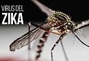 La OMS estima que el virus puede infectar hasta a 4 millones de personas en toda América./ Foto: EFE
