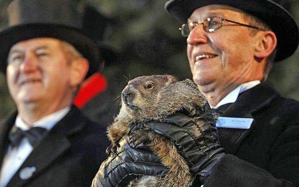 La marmota Phil predice que la primavera ya está en camino