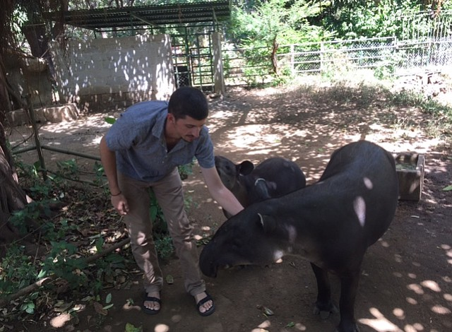 De Massachusetts a Nicaragua: Trabajando por el bienestar de los tapires centroamericanos