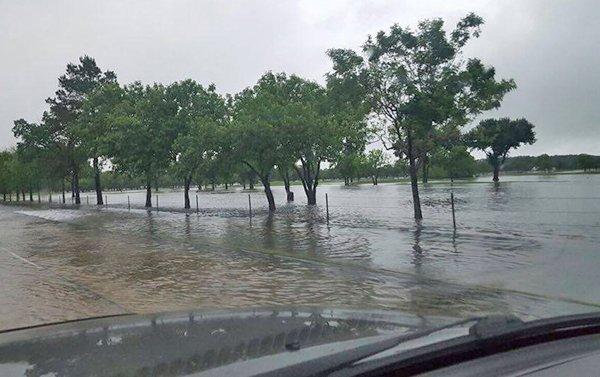 Imagen desde la autopista 610 en la carretera Clay./Foto: Marcelo Rodríguez